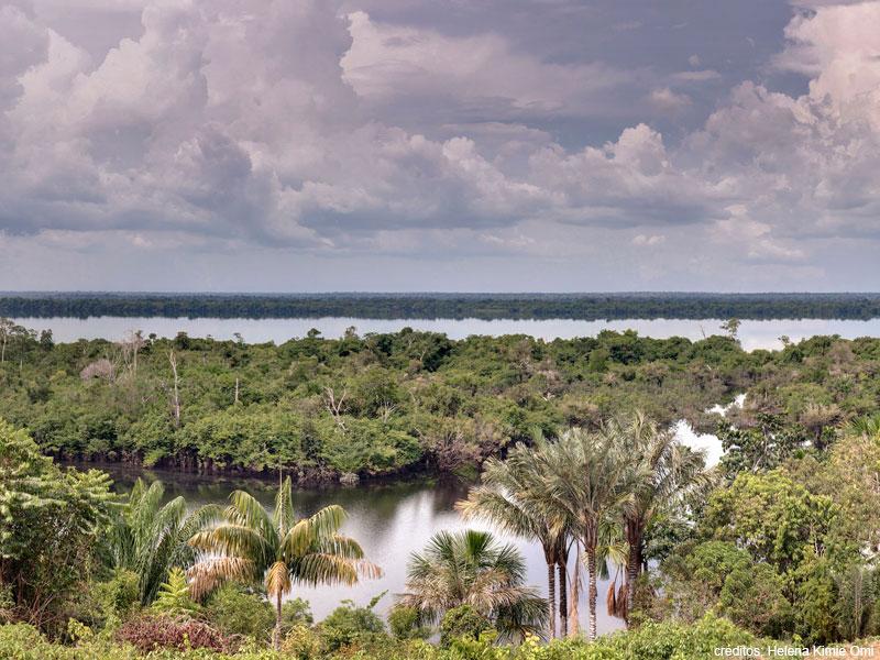carnaval natureza amazonia