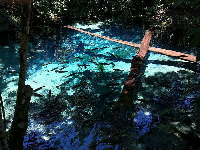 ecoturismo gruta lagoa azul