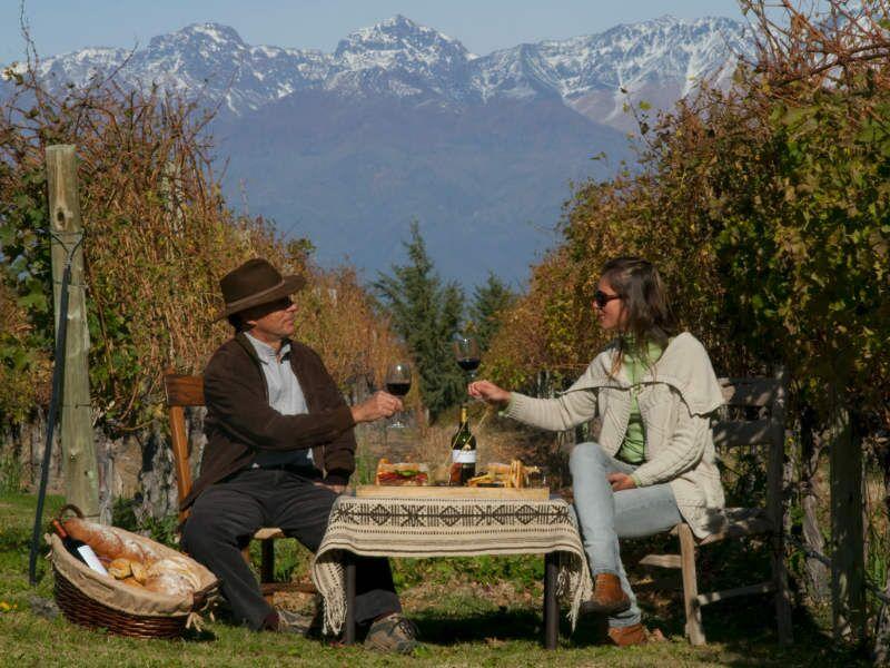o que fazer mendoza vinicolas