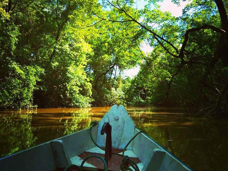 viagens espirituais entre contato natureza
